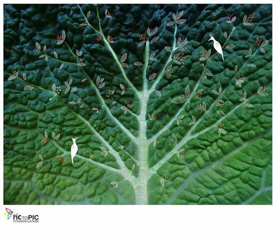 Pic to Pic: Pequeño paraíso en una hoja de col. #fotografiailustrada #ilustracion #illustratedphotography #illustration #photography #pictopic #poetry #poesia #vegetables #people #vegetales #paradise #paraiso #pajaros #birds #tree #arbol