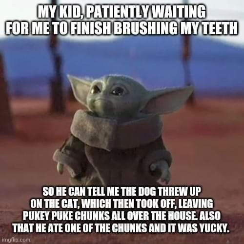 Pin By Brenda Miller On Baby Yoda In 2020 Baby Protection Dog Throwing Up Yoda