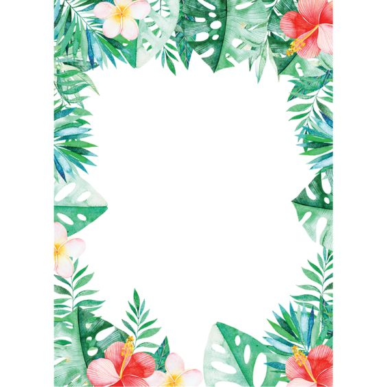 Millions Of Png Images Backgrounds And Vectors For Free Download Pngtree Tropical Frames Flower Frame Png Flower Png Images