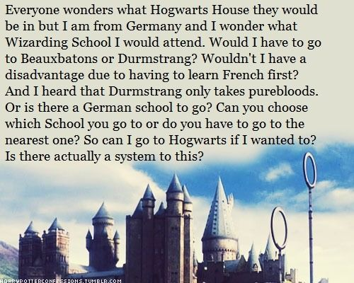 Everyone Wonders What Hogwarts House They Would Be In But I Am Harry Potter Universal Harry Potter Facts Harry Potter Funny