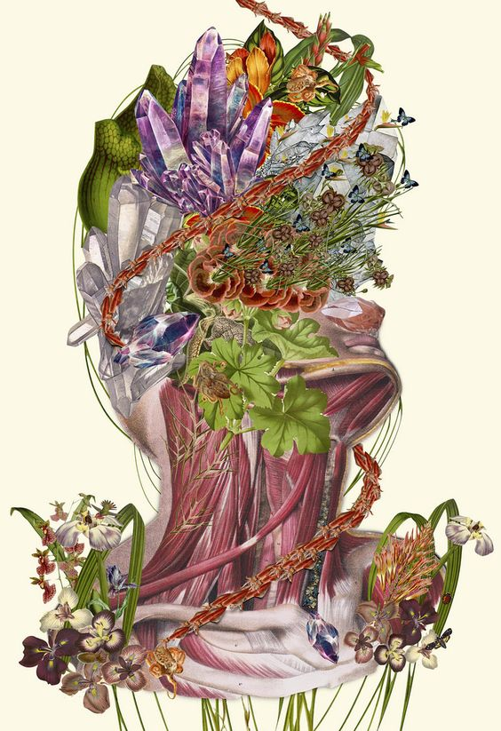 Bedelgeuse's Collages Blend Human Anatomy with Nature | Hi-Fructose Magazine: