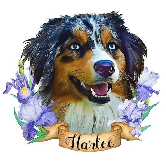 Custom Pet Portraits With Purple Iris Flowers In 2020 Pet Portraits Custom Dog Portraits Custom Pet Portraits