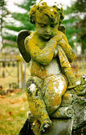 cement cherub covered with moss and lichen--perfect, perfect, perfect!
