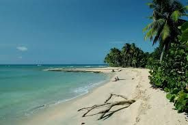 playa esmeralda miches republica dominicana - Buscar con Google
