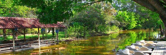 Calma na pescaria - Lazer - Hotel Fazenda Mazzaropi - Taubaté - Brasil