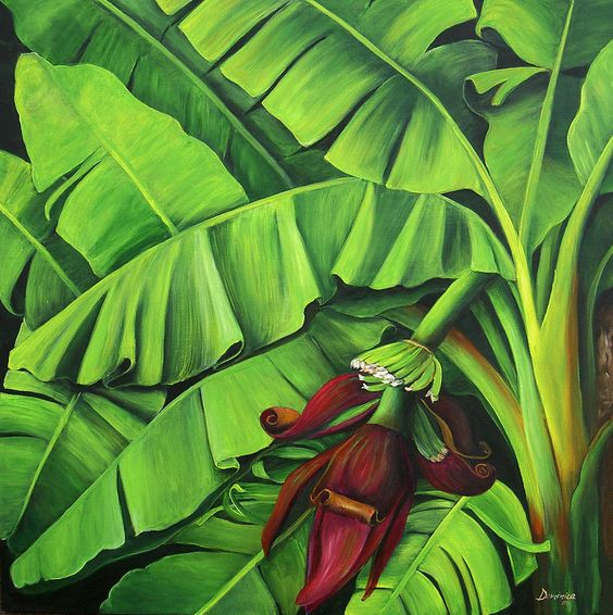 Banana Tree Flower Painting  - Banana Tree Flower Fine Art Print