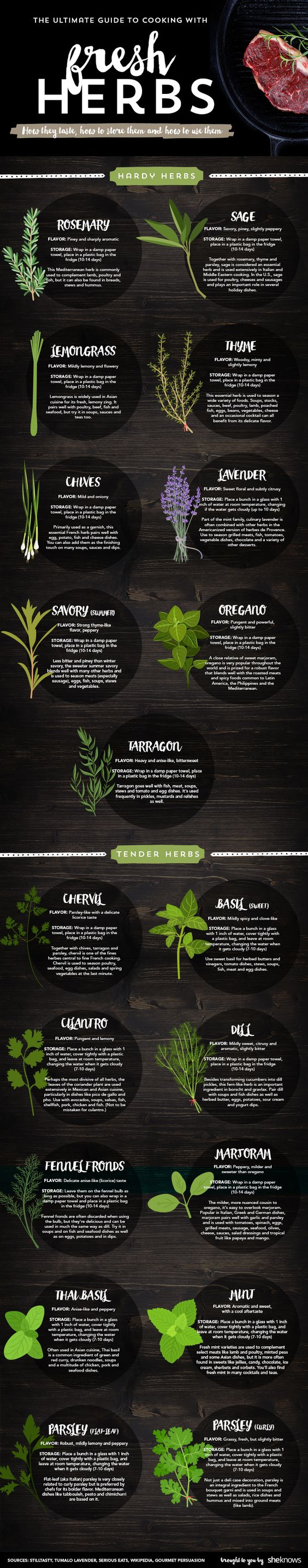 cooking with fresh herbs infographic:
