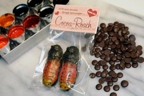 Yes, I just LOVE chocolate, but I just can't see myself diving into a COCOA-ROACH. Blech! (via Bronx Zoo)