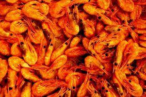 Shrimp Creole is a favorite Louisiana dish.