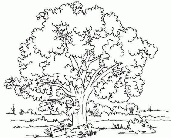 El árbol http://www.encuentos.com/cuentos-de-arboles/el-arbol-sophia-de-mello-breyner-andresen/
