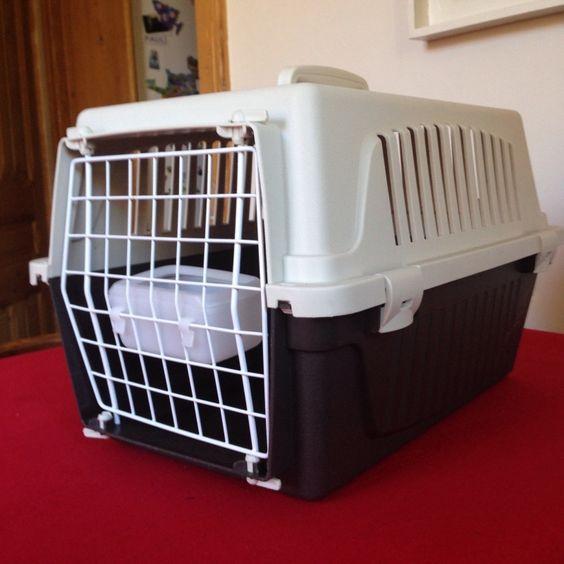 Cage pour transporter un chat.Dim 42cm x 37 x 30. Location Cage transport chat à côté d'Annecy_placedelaloc.com