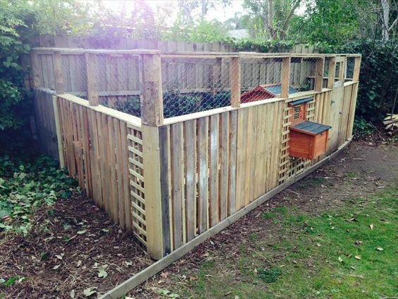 DIY Pallet Chicken Coop or Hen House! | 101 Pallet Ideas