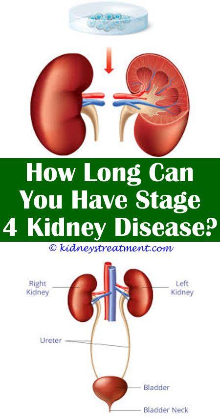 """À¸› À¸à¸ž À¸™à¹ƒà¸™à¸šà¸à¸£ À¸"""" Kidney Disease Renal"""