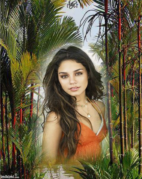 i have a dream frame jungle nature beautiful frame put your own