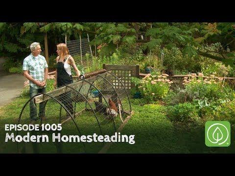 Growing A Greener World Episode 1005 Modern Homesteading Transforming The Urban Garden Experience Youtube In 2020 Modern Homesteading Urban Garden Homesteading