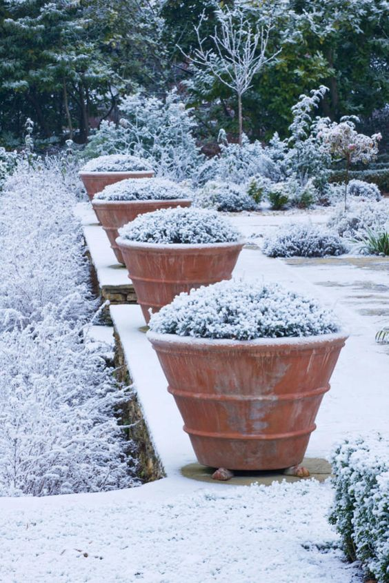 Gardens the o 39 jays and design on pinterest for Garden design winter 2018