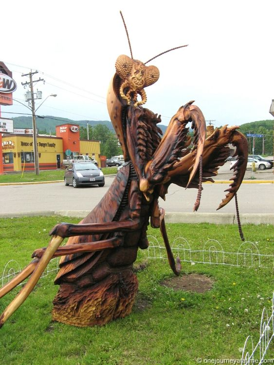 Amazing! Every June skilled and talented carvers come from around the world to compete in the Chetwynd Chainsaw Carving Championship Invitational. #BC #Travel: