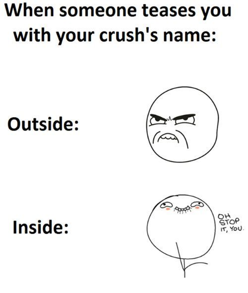 23 Crush Memes Completed Funny Crush Memes Really Funny Memes Funny Quotes