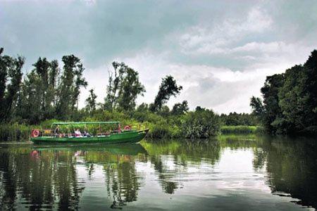 Fluisterboottocht door de Biesbosch. Lekker romantisch dobberen door de mooie natuur.