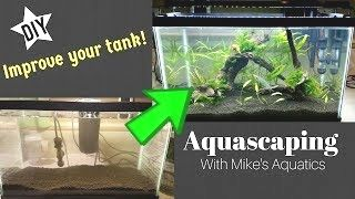 fb3a13f91dfbfac53f299aa7f11d5ead - How To Get Driftwood To Sink In Fish Tank