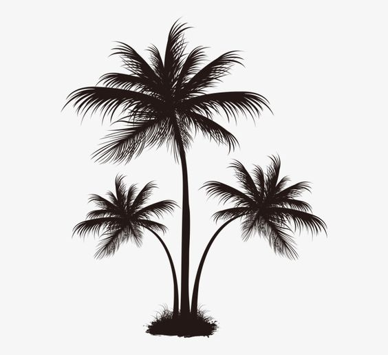 Black Palm Tree Pattern Tree Clipart Coconut Tree Grow Png Transparent Clipart Image And Psd File For Free Download Palm Tree Drawing Palm Tree Tattoo Palm Tree Pattern