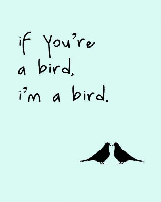 if you're a bird, i'm a bird The notebook :)