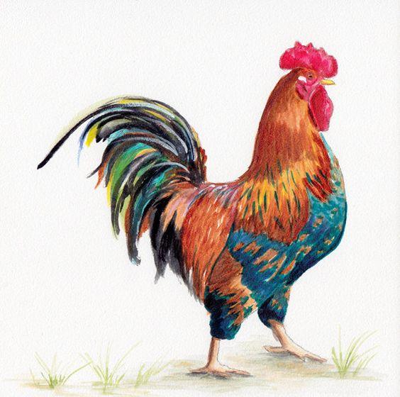 Rooster ORIGINAL watercolor by Redstreake by Redstreake on Etsy, $55.00