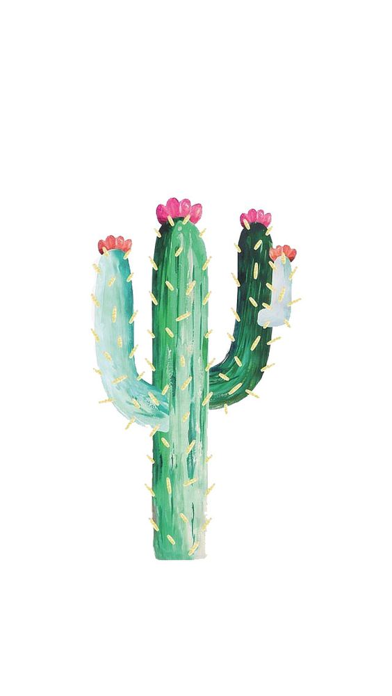 Cactus wallpaper (from My Jewellery Wallpapers