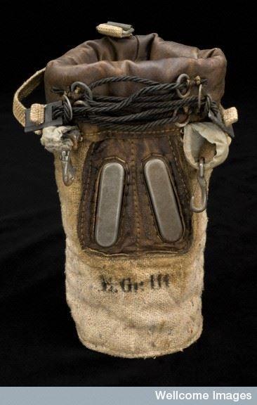 gas mask for horses ww1 ww1 animals pinterest