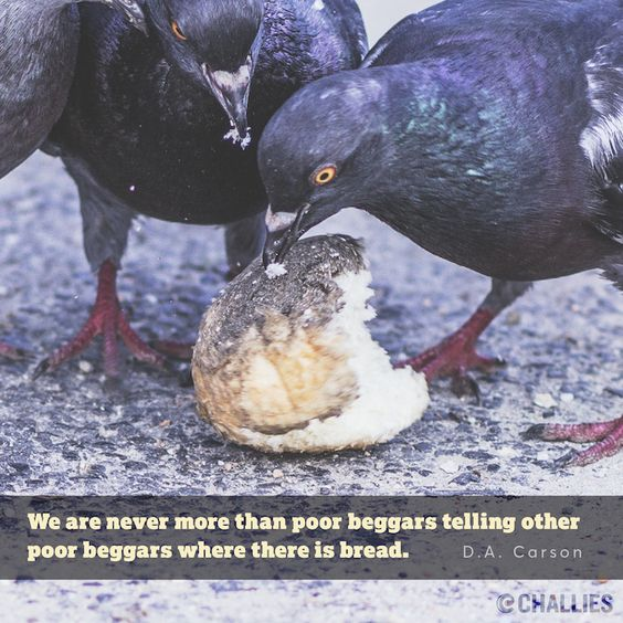 """""""We are never more than poor beggars telling other poor beggars where there is bread.""""  (D.A. Carson)"""
