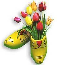 Dutch clogs and tulips: