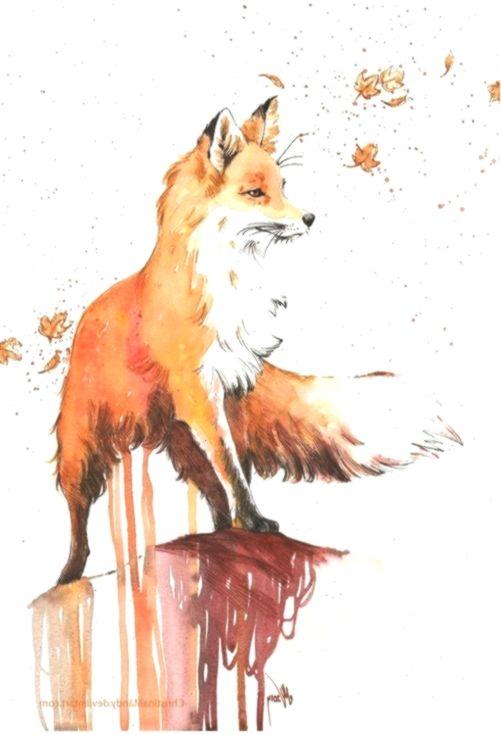 Zeichnen Aquarell Fuchs Malen Aquarell Elegante Fuchs Malen