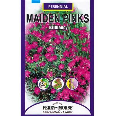 Ferry-Morse Brilliancy Maiden Pinks Seed
