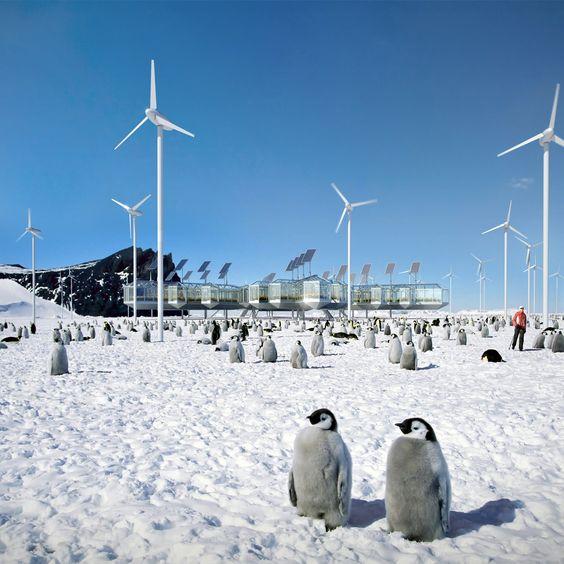 Bienal de Veneza 2014: Antártida será o primeiro continente representado na Bienal