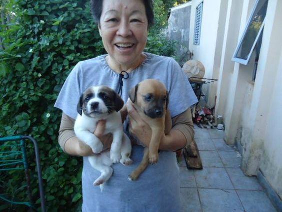 Minha amiga Zildinha e seus dois novos sobrinhos.