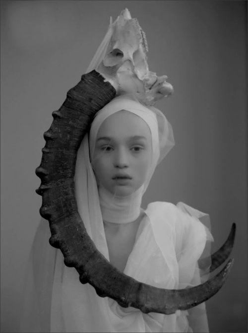 | #horns | #photograph