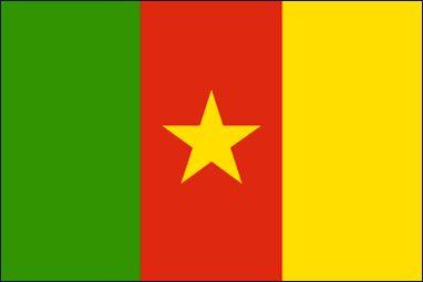 Drapeau Cameoon (#Flag of #Cameroon)