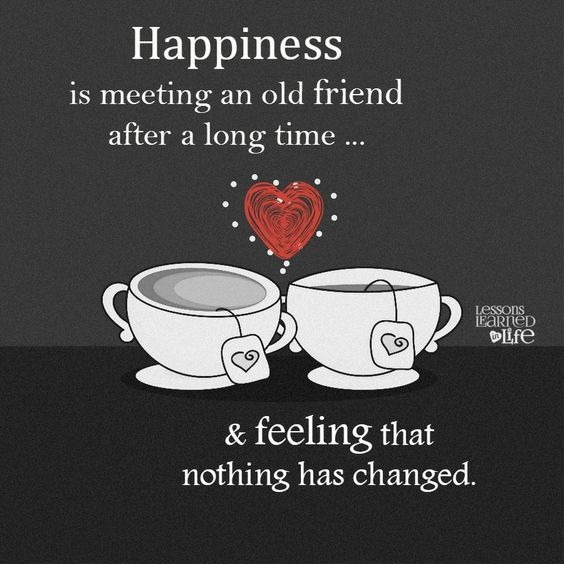 45 Friendship Day Quotes That Adds Chocolate Sprinkles To The Enigmatic Bond Of Friendship Hike N Dip Old Friend Quotes Friendship Day Quotes Friends Quotes