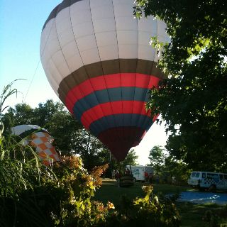Balloons over the Owensboro botanic gardens