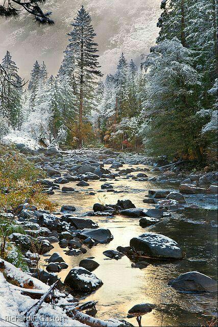 EE.UU., Califòrnia: Yosemite National Park.
