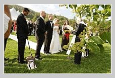 Weddings in Vermont can be a romantic ceremony in the chapel or a lavish wedding at private islands. Vermont is generally considered popular for its historic events, art, and culture.
