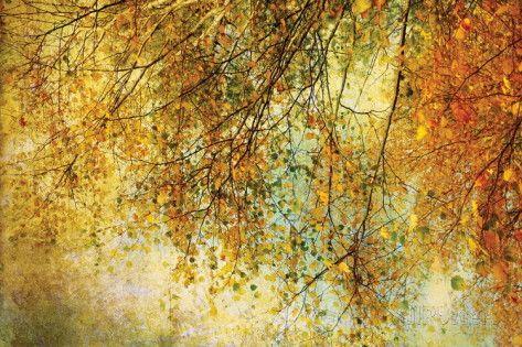 Noite de Reis Poster por Anne Staub na AllPosters.com.br