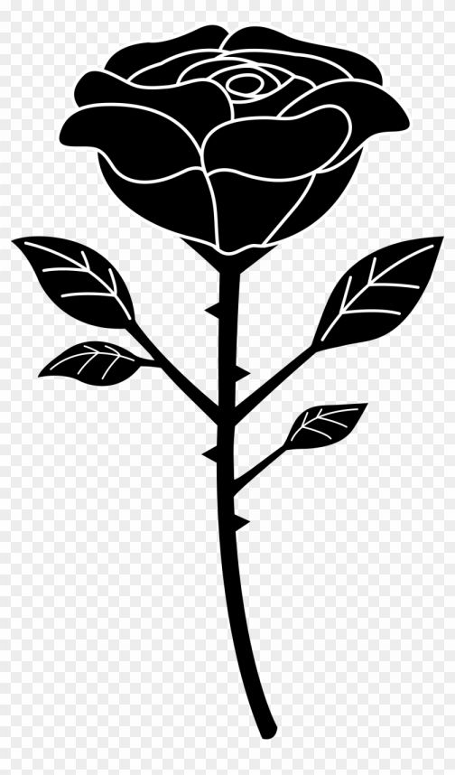 17 Black And White Rose Png White Rose Png Black Rose Flower Black And White Roses