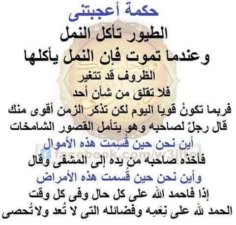 Pin By Ahmed Halim On بالعربى الجميل Words Wisdom Ms Word
