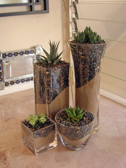 Glass Vase Pictures Of And Cactus On Pinterest