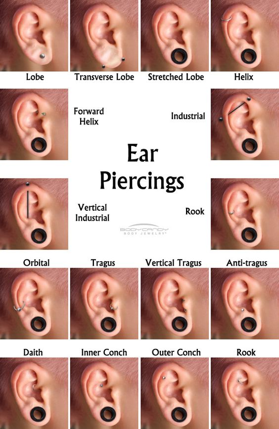 I already have my Tragus pierced and 3 forward helixs, now I need an anti-Tragus and a rook. Hahaha. My ears only take forever to heal :)