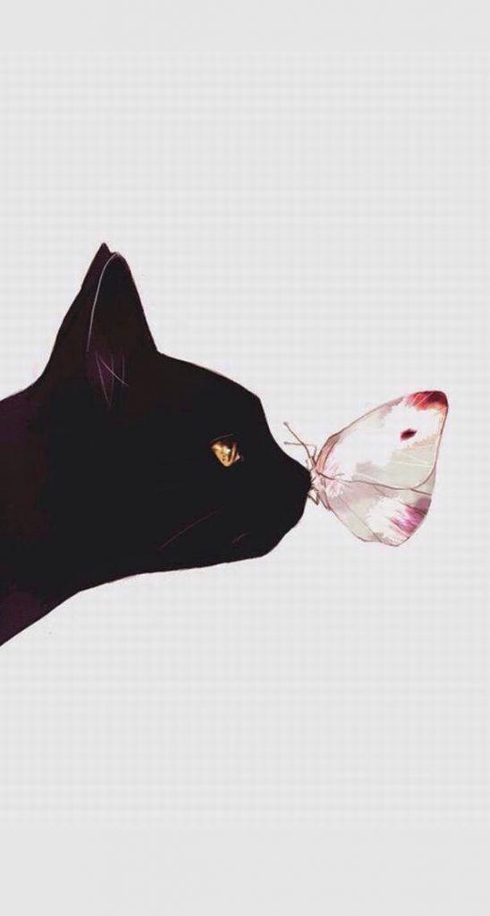 黒猫と蝶のおしゃれでかっこいいスマホ壁紙
