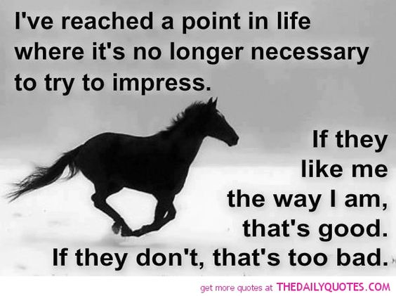 horse love quotes and sayings | motivational love life ...