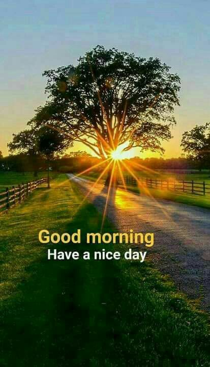 Have A Good Day Good Morning Quotes Good Morning Beautiful Quotes Good Morning Greetings