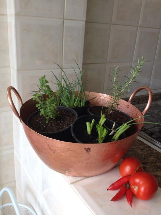Horta na cozinha.